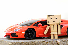 Today's Ride !! (mahernaamani) Tags: italy love home nature canon wow garden real toy photography photo amazing cool model amazon photographer ride zoom modeling outdoor bull rims oman lamborghini muscat 6d lambo  danbo   canon6d danboard  aventador danbolove