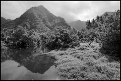 paysage Teahupoo (philippe*) Tags: blackwhite surf contest competition tahiti teahupoobillabong2