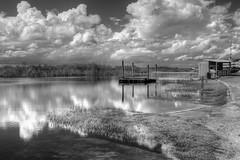IMG_1894 (Stu Haldeman) Tags: canon eos florida wetlands everglades arthurrmarshallloxahatcheenationalwildliferefuge canon5dmarkii