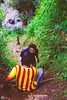 IMG_6468 (athingcalledlife) Tags: blackandwhite india green art nature rain photography colours lush coorg virajpet vsco