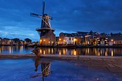 Kwak (zsnajorrah) Tags: longexposure urban reflection haarlem water netherlands windmill spaarne animals puddle duck dusk bluehour adriaan deadriaan 7dmarkii ef1635mmf4l