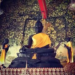 วันนี้วันพระ วันสารทไทย  กราบนมัสการ 🙏  #พระพุทธรูป ภ.ป.ร. #หลวงพ่อองค์ดำ