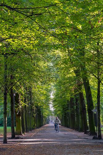 MH_Schlosspark_Biesdorf_FotoOleBader-0786