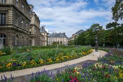 Fleurs du Luxembourg (/Paola/) Tags: flowers paris nature nikon luxembourg parigi jardinduluxembourg parisjetaime 18105vr d3100