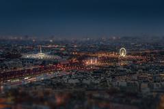 Paris seen from Eiffel Tower