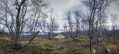 Lappland_2015_Laponia_(9_von_31) (Kibonaut) Tags: lappland peer tarp abisko laponia sleepingplace vaellus loue brockhoefer vihe kibonaut