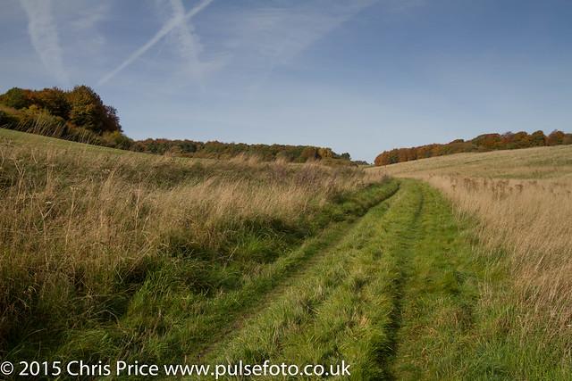 Walking the Ridgeway near West Ilsley