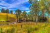 IMG_9201_2_3-Edit (Kev Walker ¦ 8 Million Views..Thank You) Tags: trees sky lake water canon dam australia nsw fields 1855mm hdr lakestclair hunterregion kevinwalker glenniescreekdam canon1100d