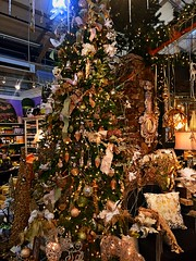 The Lovely Sights of the Christmas Holiday Season (EDWW day_dae (esteemedhelga)) Tags: santa christmas xmas holiday snow stockings st bells festive reindeer snowflakes snowman globe poinsettia illuminations garland holly scrooge nicholas elf wreath evergreen ornaments angels tinsel icicle manger yule santaclaus mistletoe nutcracker cheer jolly christmastrees happyholidays bethlehem merrychristmas bauble rejoice goodwill partridge elves yuletide caroling holidayseason carolers seasongreetings merrifieldgardencenter edww christchild daydae esteemedhelga jesus hohoho gingerbread wrappingpaper giftgiving joyeuxnoel northpole holidaydecornativity sleighride artificialtree candycane feliznavidadfrostythesnowman kriskringle sleighbells stockingstuffer wisemen twelvedaysofchristmas winterwonderland