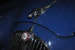 Rain drops @ night (Transaxle (alias Toprope)) Tags: motor meilenwerk classicremise berlin nikon d90 auto autos antique amazing beauty bella beautiful cars car coches coche classic classics carros carro clasico design dreamcar exotic engine historic iconic legendary macchina macchine oldtimer power powerful retro soul styling sport toprope voiture vintage voitures vehicle blue jag jaguar mk2 38litre drop drops rain night badge
