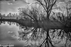 Riflessi (conteluigi66) Tags: nikonflickraward luigiconte foschia fiume natura nubi nuvole innamoramento