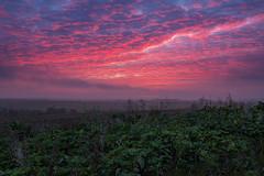 Winter Sunset (jactoll) Tags: chesterton warwickshire chestertonwindmill sunset sundown winter light colours landscape sony a7ii zeiss 1635mmf4 jactoll