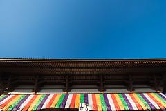 20170102-_DSC0611.jpg (ykgraph) Tags: α7rⅱ art sigma sony tokyo 1224mmf4 α7r2 日本 japan a7r2 東京
