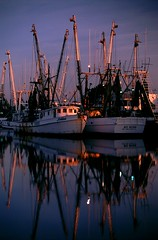 Shrimp Boats at Tarpon Springs ii (Baker Pics and Whatnot) Tags: tarponsprings shrimpboats tarpon springs shrimp boat sunrise 1996 florida