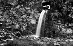 Rock wall falls (TJ Gehling) Tags: waterfall creek cerritocreek park huberpark bw blackandwhite monochrome elcerrito wall rockwall