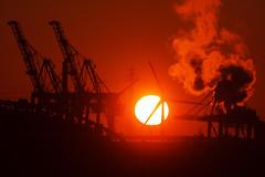 Sonnenuntergang im Hafen (Lilongwe2007) Tags: hamburg hafen industrie sonnenuntergang sonne hafenkräne containerbrücken containerhafen windkraftanlagen windräder windmühlen abend