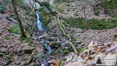 Wasserfall in der Kreuzbachklamm im Binger Stadtwald