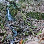 Wasserfall in der Kreuzbachklamm im Binger Stadtwald thumbnail