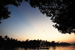 Tokina 11-16 mm (kailas bhopi) Tags: kerala sunrise tokina1116 1116mm alleppey nikon7200 nikond7200withtokina1116 silhouette backwaters boat sky pointofview landscape