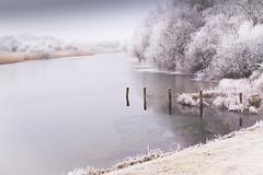 Winter-wonder-water (fransvansteijn) Tags: rood