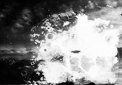 meteogrammi_005 (www.luigiredavide.com) Tags: meteogrammi ricerca materiali stampa fotografia biancoenero agentiatmosferici natura terra vento pioggia sole neve umidità rugiada nebbia polvere search materials printing photography blackandwhite weathering nature land wind rain sun snow humidity dew fog dust