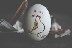 egg E.X.P.L.O.R.E.D (Ayeshadows) Tags: macromonday macro monday eggs egg feathers hen art heart