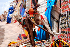 Berber crafts - Ait Ben Haddou (sahatours) Tags: voyage africa travel viaje nikon camel morocco maroc viagem marocco marruecos marrocos travelphotography aitbenhaddou travelphoto desertlife travelworld