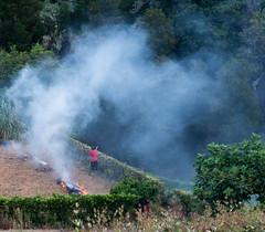 A walk round Caloura 8/15 Azores (adamnsinger) Tags: field miguel fire smoke sao azores caloura tending acores