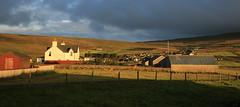 Morning Glow (falkirkbairn) Tags: shetland