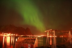 Lights over Reine