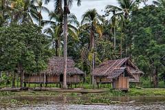 Bien Village, Papua New Guinea (bfryxell) Tags: papuanewguinea oceania melanesia dugoutcanoe sepikriver bienvillage