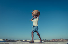 Salt-itude (anandgovindan) Tags: life street morning travel blue sky people india white man male men canon day lift outdoor horizon ngc madras salt wideangle adobe worker chennai hardwork carry journalism tamilnadu slog pondicherry southindia lightroom lowangle twop saltpan cwc hardship ultrawideangle workship saltfield marakkanam saltevaporationpond marakanam 1116mm nammachennai tokina1116mm canon600d chennaiweekendclickers mychennai cwc478 anandgoviphotography anandgovindan