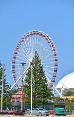 Navy Pier Ferris Wheel memories (stevelamb007) Tags: chicago tourism illinois nikon lakemichigan ferriswheel navypier touristattraction 18200mm stevelamb d7200