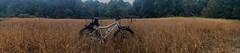 City of Frederick Watershed Rainy Ride (georgestewart1956) Tags: goldengrass fatbike bike123 fatbackbicycles stewartbrosphotographers cityoffrederickwatershed