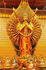 Well armed !!! (john a d willis (away )) Tags: temple singapore buddha littleindia