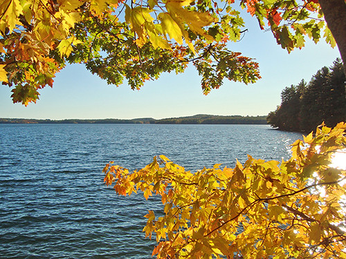 Lake Auburn - J Maloney