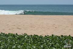 surfingdaysrivieranayarit (162 of 162) (Kitesurf Vacation Mexico) Tags: school la surf riviera surfing nayarit puntamita islas lancha sayulita surfspot marietas litibu