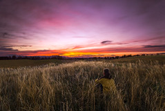 Never Ending Joy (ethansumsion) Tags: pink sunset sky usa cloud mountain lake beautiful field grass clouds photoshop photography utah photo weeds weed pretty purple nowhere sunsets middle highlight layton lightroom photosho