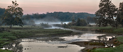 Nith River at dawn (virgil martin) Tags: panorama ontario canada fog sunrise landscape gimp waterlooregion nithriver wilmottownship oloneo olympusomdem5