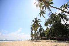 AJY_2952 (arika.otomamay) Tags: beach srilanka trincomalee
