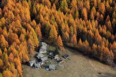 Val d'Aosta - Valsavarenche, il fondovalle si avvicina.... (mariagraziaschiapparelli) Tags: foliage autunno valdaosta granparadiso escursionismo camminata valsavarenche pontvalsavarenche meye pngp gruppodelgranparadiso allegrisinasceosidiventa