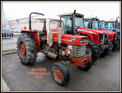 Massey Ferguson 188 (DaveFuma) Tags: tractor ferguson 188 trattore massey agricolo trattrice