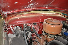 """1950 Ford • <a style=""""font-size:0.8em;"""" href=""""http://www.flickr.com/photos/85572005@N00/23668329472/"""" target=""""_blank"""">View on Flickr</a>"""