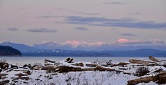 Sunsetting (shireye) Tags: shelterpoint bc britishcolumbia vancouverisland mountains sunset straitofgeorgia water nikon d610 24120 ff fullframe fx christmas crafts sewingbuddies islandsewing snow driftwood tones pink softtones soft