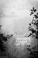 20161231Brouillard-9 (loflol) Tags: coteaux brouillard brume ancien grain