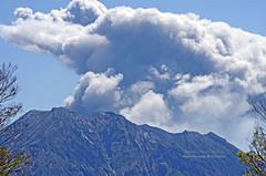 噴火した桜島 (Fotarts) Tags: sakurajima eruption volcano mountain 桜島 山 火山 噴火 nature 自然