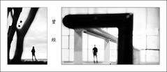 組合-曾經-1-a-F47A2165-BW-2-a-F_47A1519-BW-1-Canon 5DIII-Canon 70-300mm-May Lee 廖藹淳 (May-margy) Tags: maymargy 組合 曾經 bw 黑白 人像 帷幕牆 窗戶 扶手 模糊 散景 樹木 果實 海邊 背影 剪影 街拍 streetviewphotographytaiwan 線條造型與光影 linesformandlightandshadows 天馬行空鏡頭的異想世界 mylensandmyimagination 心象意象與影像 naturalcoincidencethrumylens 新北市 台灣 中華民國 taiwan repofchina humaningeometry 組合曾經1af47a2165bw2af47a1519bw1 portrait silhouette glass wall rail windows blur bokeh newtaipeicity canon5diii canon70300mm maylee廖藹淳 tree fruits seashore