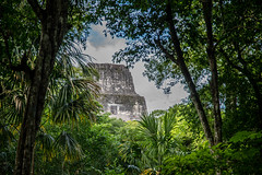 20161120-1127 Belize_DSC5489.jpg (koloding) Tags: ancient belize tikal mayan centralamerica pyramids culture decay mayanruins tropical indian