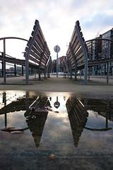 Les quais de Meuse (Liège 2016) (LiveFromLiege) Tags: liège liege luik lüttich liegi lieja belgique belgium wallonie reflet reflection puddle puddlegram puddlephotography quaisdemeuse meuse architecture city citylife