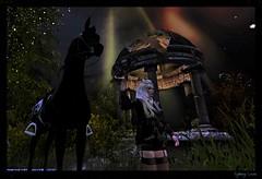 ♥♥♫Diego♫♥♥ (sydneylevee) Tags: horses horse cheval chevaux pets pet animal night maitreya hair lelutka hurley lara nature land fashion sky ciel